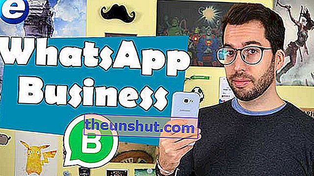 Come installare e cosa fare con WhatsApp Business o WhatsApp for Business